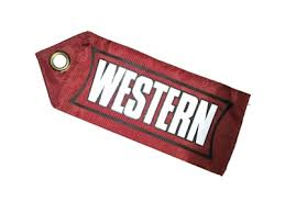Western Plow Part # 59694 - 59694 - BLADE GUIDE FLAG